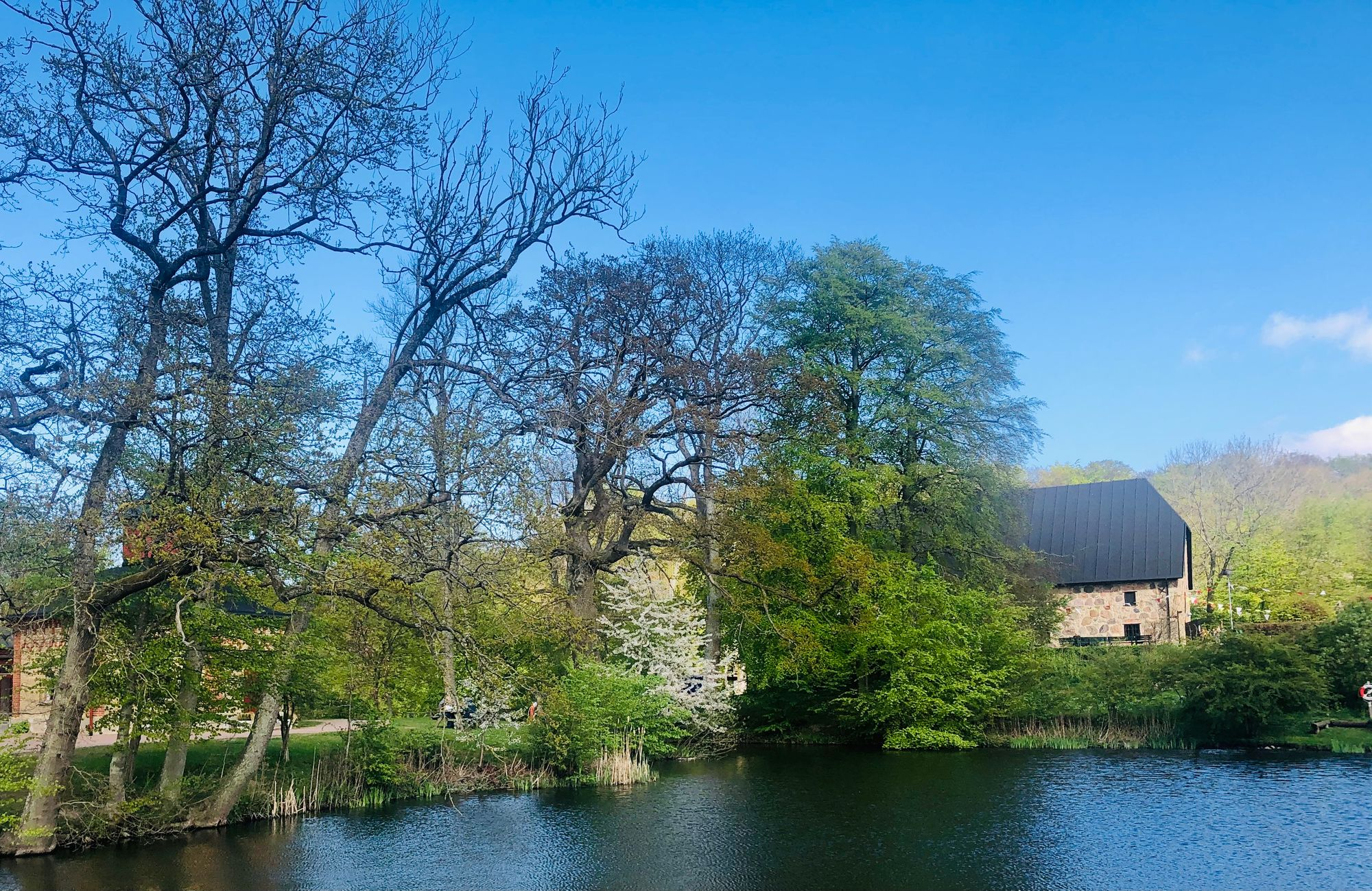 Scenic landscape with a small lake, trees and old buildings.